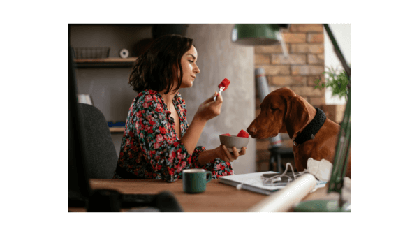 What Fruits For Dogs Are Good?